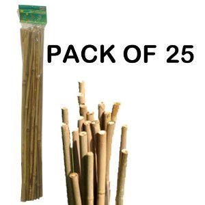 Bamboo Stakes 4ft (1200mm) x 25